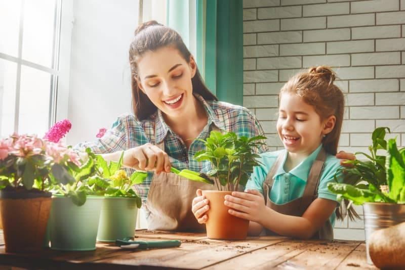 買盆栽跟孩子一起回家種,竟有5種意想不到的好處!改善注意力、增強記憶,每天吃菜多兩倍!